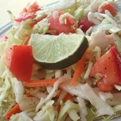 Southern Coleslaw Recipe - This is a quick and original coleslaw for people who don't like mayonnaise that is made with tomato and lime juice.
