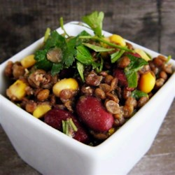 Vegan Lentil Salad Recipe - Green lentils and kidney beans are tossed in a light vinaigrette for a vegan, protein-packed salad. Bring to your next gathering or pack it for lunch!