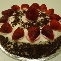 Tres Leches Cake with Strawberry and Chocolate