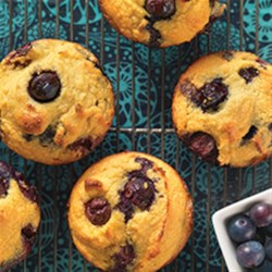 Gluten-Free Blueberry Muffins made with Coconut Flour Recipe - In this recipe, a little bit of our coconut flour goes a long way. These quick and easy muffins are beautifully fluffy and moist, and are a great family breakfast treat or a tea-time snack to wow your guests.