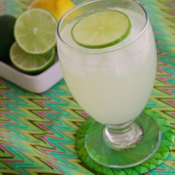 Tasty Limeade Recipe - This version of limeade goes easy on the sugar and adds a touch of salt to deliver a refreshingly not-too-sweet classic.