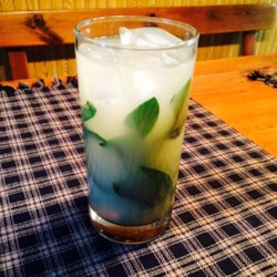 Yankee Mint Julep Recipe - Perfect on a hot summer day, this Yankee mint julep is sweetened with maple syrup and topped off with lemonade.