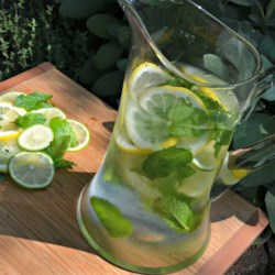 Mint Citrus Water Recipe - Mint and citrus-infused water, with or without cucumber, is a refreshing and elegant drink when you have company.