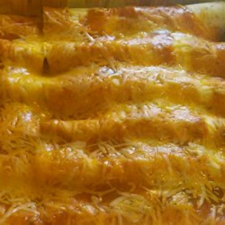 Spicy Chicken Enchiladas Recipe - Enchiladas filled with ground chicken and assorted additions. Bake topped with sauce and cheese.