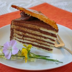 Dobos Torte Recipe - This wonderful special-occasion cake is made with thin layers of sponge cake, bittersweet chocolate buttercream, and a brittle caramel top layer that's cut into wedges for garnish.