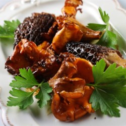 Wild Mushroom Sauce Recipe - This sauce, made with chanterelles, morels, or a combination of wild and cultivated mushrooms, is excellent over most grilled meats, including veal or beef medallions.