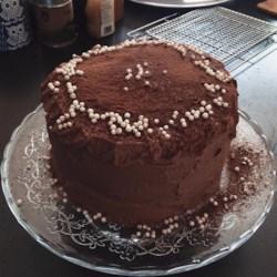 Food processor chocolate cake recipes