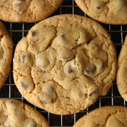 Felix K.'s 'Don't even try to say these aren't the best you've ever eaten, because they are' Chocolate Chip Cookies Recipe - Try this recipe for terrific chocolate chip cookies!