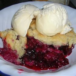 Hot cobbler with Ice Cream