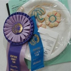 Couny Fair Winner!