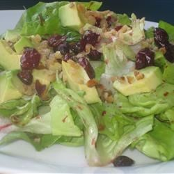 Wonderful Raspberry Walnut Dinner Salad Recipe - This delicious salad boasts a colorful lettuce mixture topped with cranberries, sunflower seeds, plum tomatoes and avocado, all liberally coated with raspberry walnut vinaigrette.