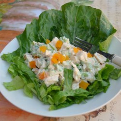 Sweet and Sour Chicken Salad Recipe - This tangy chicken salad is a snap to prepare and will delight your taste buds with creamy, apricot and green onion-studded sweet and sour dressing.
