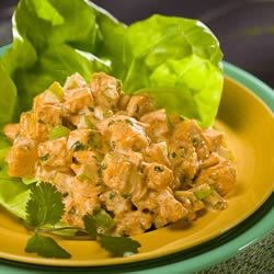 Simple Southwestern Chicken Salad Recipe - Chicken breast with mayo, celery, cilantro and taco seasoning for that Southwestern flair.