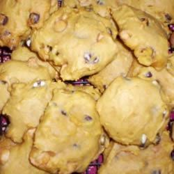 Pumpkin Chocolate Chip Cookies I Recipe - You will be glad you tried this unique combination of nuts, chocolate, spices, and pumpkin.