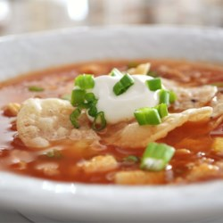 Chicken Tortilla Soup V Recipe - Lemon juice brightens the flavors in this chicken, corn and salsa soup seasoned with cumin and chili powder.  Garnish with tortilla chips, grated cheese and a dollop of sour cream.