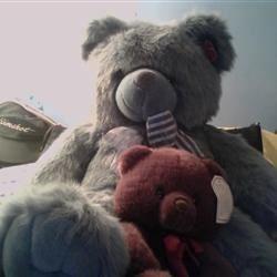 Bear the cuteness