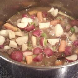 Venison Stew II Recipe - Cubes of venison stew meat are browned with onions and garlic and combined with Worcestershire sauce, thyme and bay leaf in this stew with carrots and parsnips.  Serve over rice or wide egg noodles.