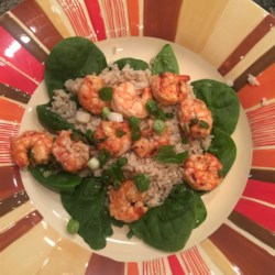 Healthier Marinated Grilled Shrimp Recipe - Using less oil, this quick and easy marinated and grilled shrimp is healthier, but still bursts with flavor from tomato sauce, vinegar, and cayenne pepper.