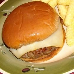 Aaron's Missouri Burger Recipe - Honey mustard, brown sugar, and several spices are mixed with ground beef to make these well-seasoned burgers.