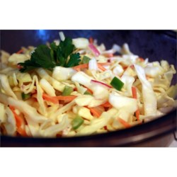 Cabbage Salad II Recipe - Cabbage, carrot and bell pepper are marinated in a light dressing, and tossed with fresh crumbled bacon just before serving. One of our favorite summer salads. To make it easy, I use a food processor for the shredding.