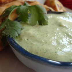 Amy's Cilantro Cream Sauce Recipe - A spicy light green sauce fragrant with cilantro. Refreshing.