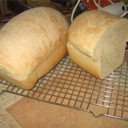 Whole Wheat Bread II Recipe - This recipe will give you four generous loaves of sweet, simple whole-wheat bread, so you do not have to bake every day.
