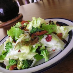 Wilted Lettuce Salad Recipe - The dressing in this salad is warm and yummy. Vinegar, lemon juice, and a smidgen of sugar are stirred into warm bacon drippings and cooked until hot and ready to pour over chopped lettuce and green onions. Sprinkle with bacon and serve.