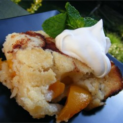 Easy Peach Cobbler Recipe and Video - Quick cobbler with canned peaches -- ready in less than an hour.