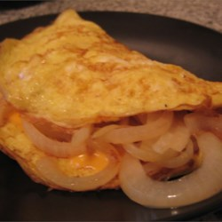 Carmalized Onion and American Cheese Omelette