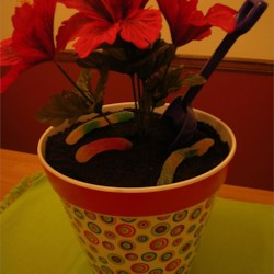 Dirt Cake I Recipe and Video - This is a great conversation piece at parties.  Adults love it as much as the children do.  Get a new garden trowel, medium sized flower pot and artificial flower at a craft store for full effect.