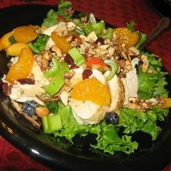 The Really Good Salad Recipe with Pieces of Fruit (May 25, 2010)