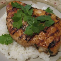 Runaway Bay Jamaican Chicken Recipe - This recipe lit up the family, and everyone loved it. As it got passed around to family and friends, slight changes occurred. For instance, you can omit the cilantro if you don't care for it or use less nutmeg and more cloves; the possibilities are endless.