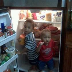 My boys in refrig one of their fav places