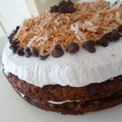 Quick Chocolate Chip Cake