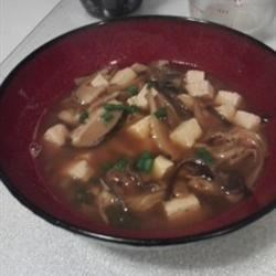 Vegan Hot and Sour Soup Recipe - A mushroom and tofu extravaganza! The exotic ingredients in this enticing soup may be found in Asian grocery stores. Don't let the extra effort keep you from trying this tasty treat!