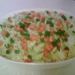 Fantastic Mexican Dip Recipe - This recipe was given to me by my sister-in-law and always goes fast! Cream cheese at the base of the dip makes it extra thick and scoopable. Seasoned beef and vegetables make it extra filling and tasty! You may want to prepare two batches. Serve with tortilla chips and enjoy.