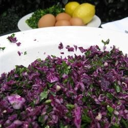 Raw Vegan Red Cabbage Salad