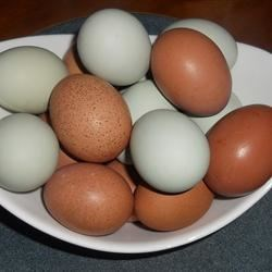 Fresh Eggs from my girls!
