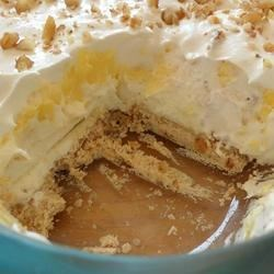 Mom's Texas Delight Recipe - You've never had a pudding dessert this good!  It is elegant and delicious.  Everyone will want the recipe. This is NOT your ordinary pudding dessert! It is well worth your efforts.