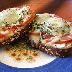 Most Excellent Sandwich Recipe - This is a healthy melt in your mouth sandwich if you are tired of the traditions.  Whole wheat bread is served open face with cream cheese, tomatoes, alfalfa sprouts and mozzarella cheese, then baked to perfection. These are sure to impress the pickiest of eaters!