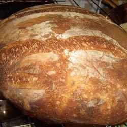 Basic White Sourdough Loaf