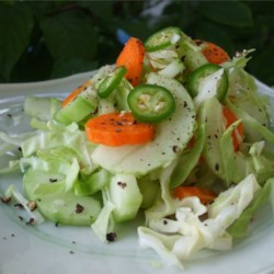 Spicy Bok Choy Slaw Recipe - A hot, spicy, and colorful slaw is based on shredded bok choy, cucumber, and carrots, then spiked with hot cherry peppers and tossed with a sweet and tangy mustard and jalapeno dressing. Roasted ground ginger and freshly cracked pepper are sprinkled on before serving. Great for those who love spicy foods.
