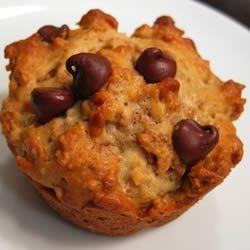 chocolate chip bran muffin