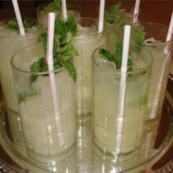 Alcohol-Free Mint Julep Recipe - An alcohol-free mint julep for you non-drinkers out there.... now you don't have to drink water and can enjoy the classic mint julep with a slight twist while watching the Kentucky Derby!
