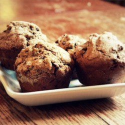 Chocolate Chocolate Chip Muffins Recipe - Truly a chocolate-lover's dream, these muffins are made with semisweet chocolate and chocolate chips.  They freeze well, but they will be gone before you know it.