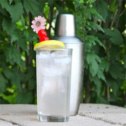 Tom Collins Recipe - This is a great warm weather cocktail with or without the splash of bitters.
