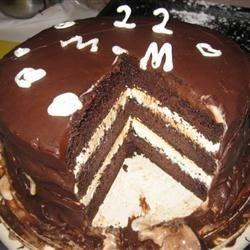 Chocolate and Vanilla Ice Cream Cake