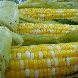 Grilled Corn on the Cob Recipe and Video - Butter, salt and a little pepper are all you really need to bring out corn's natural sweetness on the grill.
