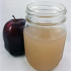 Fresh, Homemade Apple Juice Recipe - You can use the apple peels and cores left over from making an apple dish to make a delicious, low-budget apple drink. Just be sure to take out the seeds.