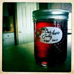 Mary Wynne's Crabapple Jelly Recipe - This is a fresh tasting, pure jelly with no pectin added. Just the goodness of your backyard. No commercial pectin is required as crabapples have high natural pectin content.